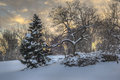 Central park new york city after snow storn in Royalty Free Stock Images