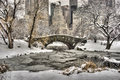 Central park new york city after snow storn in Stock Photography