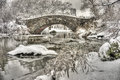 Central park new york city after snow storn in Stock Images