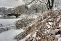 Central park new york city after snow storn in Royalty Free Stock Photography