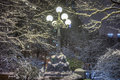 Central park new york city street lamp after storm Royalty Free Stock Image