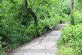 Central park new york city united states footpath in Royalty Free Stock Image