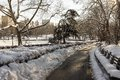 Central park new york city in winter after snow storm Royalty Free Stock Images