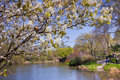 Central park nyc new york city apr view of pond and gapstow bridge in new york city on apr which has been a national Royalty Free Stock Photography