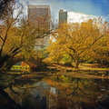 Central Park pond. New York, NY. Royalty Free Stock Photo