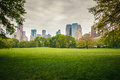 Central park at rainy day Stock Image