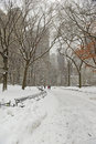 Central park in the snow new york manhattan city usa Royalty Free Stock Photo
