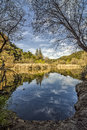Century湖垂直 免版税图库摄影