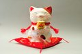 Ceramic cat japanese new year decoration Royalty Free Stock Photos