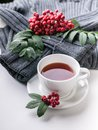Ceramic teacup on white served table. Herbal tea in porcelain mug with saucer. Knitted sweater, rowan branch still life. Hot Royalty Free Stock Photo