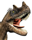 Ceratosaurus dinosaur closeup headshot Stock Photography