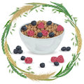 Cereal balls in bowl with raspberry, blueberry and wreath with cereals. Barley, wheat, rye and oat. Healthy breakfast. Royalty Free Stock Photo