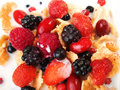Cereal brakfast with berries shot from above Royalty Free Stock Image