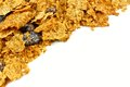 Cereal corner border of bran flakes and raisins on a white background Royalty Free Stock Photography