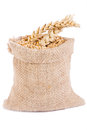 Cereal grains in bag gold linen sack Royalty Free Stock Photography