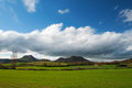 Cereal green fields and blue sky with clouds la rioja spain Royalty Free Stock Photos