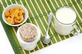 Cereal and milk diet. Royalty Free Stock Photo