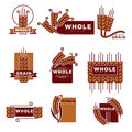 Cereal and whole grain bakery product vector icons templates set