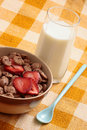 Cereals bowl Royalty Free Stock Photo