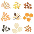 Cereals grains icon set solid fill in eps format Stock Images