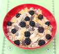 Cereals some with chocolate and blackberries Stock Photo