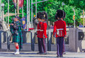 Ceremonial Guard Royalty Free Stock Photo