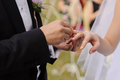 Ceremony in park closeup of hands exchanging wedding rings Royalty Free Stock Photography
