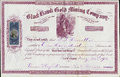 Certificat noir de hawk gold mining company stock territoire du colorado Photos stock