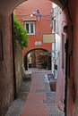 Cervo ligure Royalty Free Stock Photo
