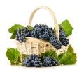 Cesta de mimbre por completo de uvas rojas frescas en blanco Imágenes de archivo libres de regalías