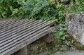 A chaffinch fringilla coelebs sit on fense in the fulling mill vitosha mountain bulgaria Stock Image