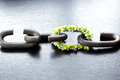 A chain is only as strong as its weakest link proverb one made of flowers Stock Photography
