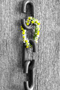 A chain is only as strong as its weakest link proverb one made of flowers Royalty Free Stock Photography