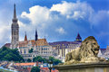 Chain Bridge Lion Matthias Church Budapest Hungary Royalty Free Stock Photo