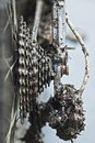 Chain and gears full with mud Royalty Free Stock Photo