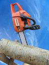 Chain saw in cut of wooden log over blue sky Stock Photo