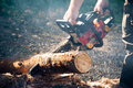 Chain saw man work with in the forest Royalty Free Stock Photo