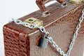 Chained case with a padlock made of crocodile leather Royalty Free Stock Image
