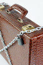 Chained suitcase with a padlock made of crocodile leather Stock Photography