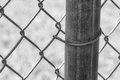 Chainlink fence post in black and white Royalty Free Stock Photo