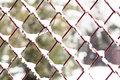 Chainlink fence snow on the Stock Image