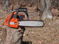 Chainsaw in forest Stock Images