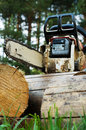 Chainsaw on wood cuttings Royalty Free Stock Photo