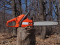 Chainsaw and woods Royalty Free Stock Photo