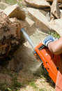 Chainsaw in Work Royalty Free Stock Photography
