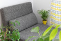 Chaise longue and plants in the living room gray lots of green Royalty Free Stock Photos