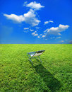Chaise lounge on the green grass Stock Images