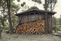 Chalet in forest old with log stack outside Stock Photo
