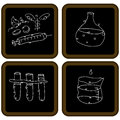 Chalkboard biology icons an image of Stock Photography