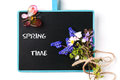 Chalkboard with flowers removable sample text bouquet of wildflowers and glass butterfly over white Royalty Free Stock Photography